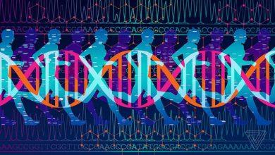 Photo of بررسی ناقلی بيماريهای ژنتيكی در زوجین